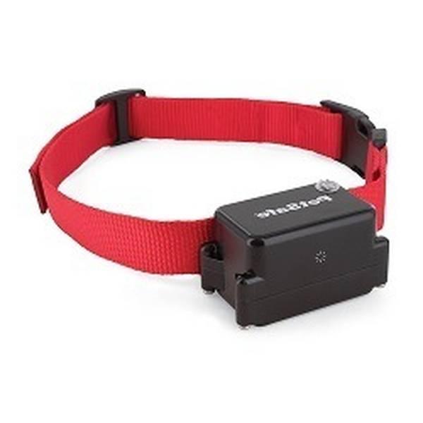 collier chien electrique anti fugue sans fil