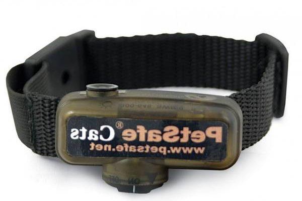 Collier anti fugue chat avis ou bracelet anti fugue ehpad