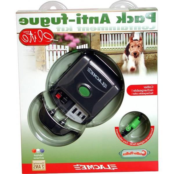 collier anti fugue pour chien sans fil