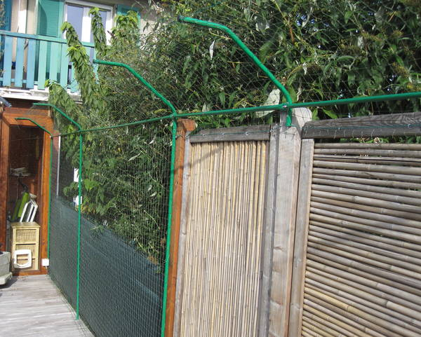 petsafe clôture anti fugue radio fence
