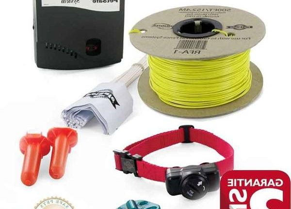 fil electrique avec collier pour chien