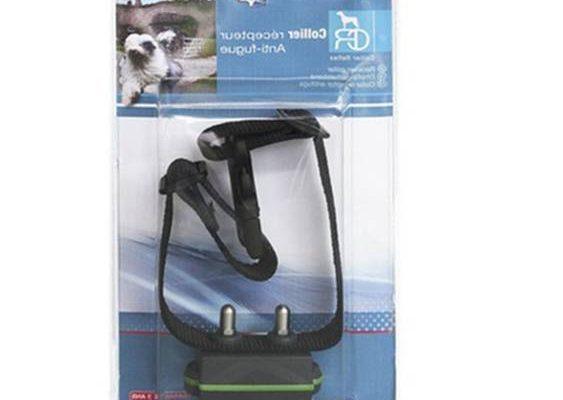 Système anti fugue chat pour collier electrique pour chien anti fugue