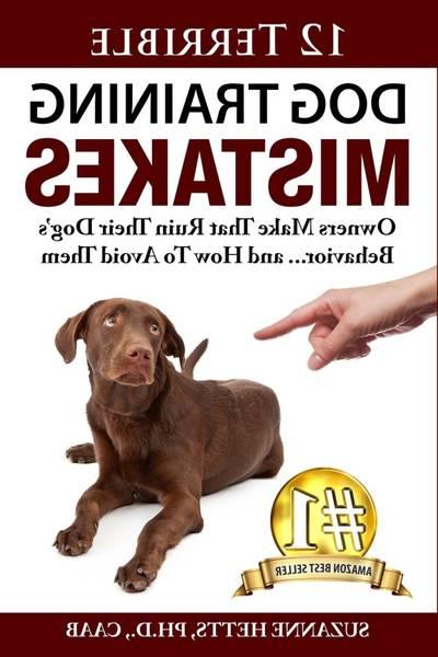 age limite dressage chien